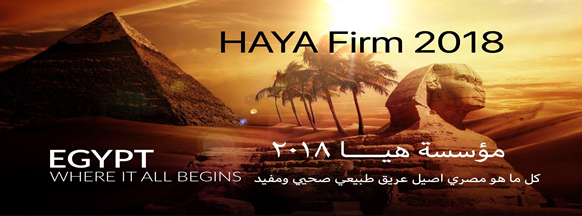 HAYA Establishment